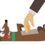 Castigar a un perro tumbándolo